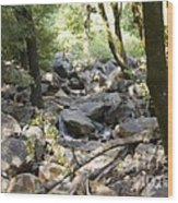 pr 135 - A Very Dry Stream  Wood Print