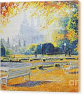 Prague Autumn In The Kralovska Zahrada Wood Print by Yuriy Shevchuk