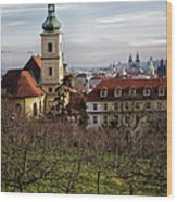 Prague View From The Gardens Wood Print