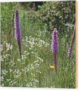 Prairie Blossoms Wood Print