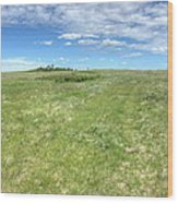 Prairie Breeze Wood Print