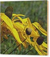 Prairie Flowers In Wind Wood Print