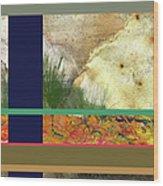 Prairie Grasses Amid The Rocks Wood Print