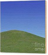 Prairie Hill Wood Print