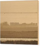 Prairie Lake Wood Print
