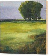 Prairie Light Wood Print