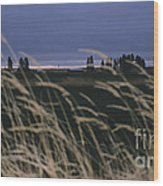 Prairie Morning Wood Print