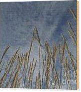 Prairie Prayers Wood Print