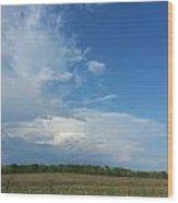 Prairie Thunder Wood Print