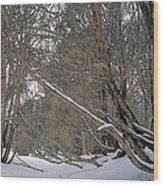Prairie Winter 2 Wood Print