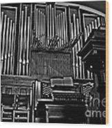 Praise Him Wood Print by Scott Allison