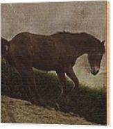 Prancing Horse Wood Print