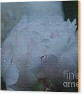 Pre Dawn Rain Wood Print