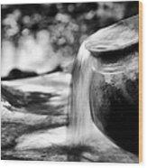 Precious Water Wood Print by Tim Gainey