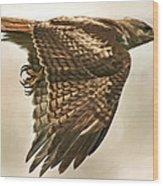 Predator Wood Print by Hazel Billingsley