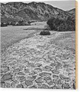 Prehistoric - Clark Dry Lake Located In Anza Borrego Desert State Park In California. Wood Print