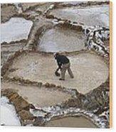 Preincan Salt Mines In Maras Peru Wood Print