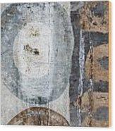 Silken Circles 2 Wood Print
