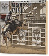 Prescott Az Rodeo Wood Print