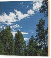 Prescott National Forest Spring Skies Wood Print