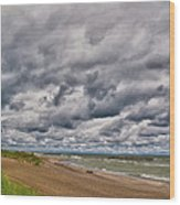 Presque Isle Beach 12061 Wood Print