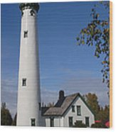 Presque Isle Mi Lighthouse 5 Wood Print