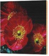 Pretty As A Poppy Wood Print by Helen Carson