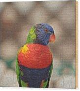 Pretty Bird - Rainbow Lorikeet Wood Print