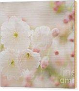 Pretty Blossom Wood Print