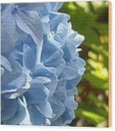 Pretty Blue Flower Wood Print