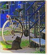 Pretty Cat In Verdun Taking The Sun Blue Picket Fence And Bike Montreal Garden Scene Carole Spandau  Wood Print