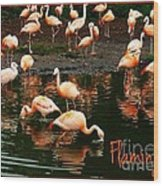 Pretty Flamingos Wood Print