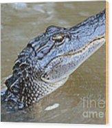Pretty Gator Wood Print