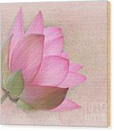 Pretty In Pink Lotus Blossom Wood Print by Sabrina L Ryan