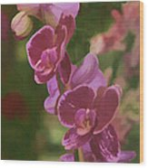 Pretty In Pink Water Color Effect Wood Print