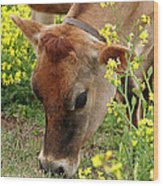 Pretty Jersey Cow - Vertical Wood Print
