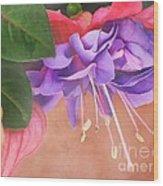 Pretty Little Fuchsia Wood Print