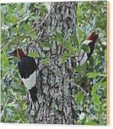 Pretty Pair Of Redheads Wood Print