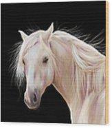 Pretty Palomino Pony Painting Wood Print