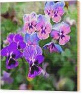 Pretty Pansies 4 Wood Print