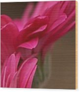 Pretty Petals Wood Print