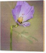 Pretty Purple Flower Wood Print