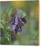 Pretty Purple Flowers In Ireland Wood Print