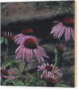 Pretty Purple Ladies Wood Print