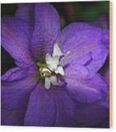 Pretty Purple Petals Wood Print
