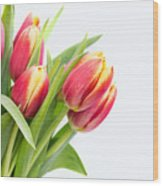 Pretty Red And Yellow Tulips On White Background Wood Print