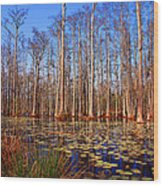 Pretty Swamp Scene Wood Print by Susanne Van Hulst
