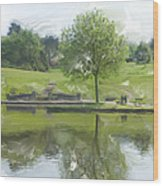 Pretty Tree In Park Picture.  Wood Print