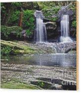 Pretty Waterfalls In Rainforest Wood Print