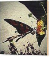 Prey The Yellow Flower Wood Print